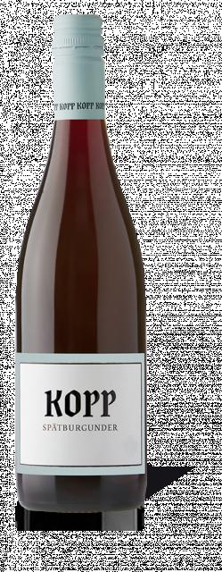 Weingut Kopp Sinzheim